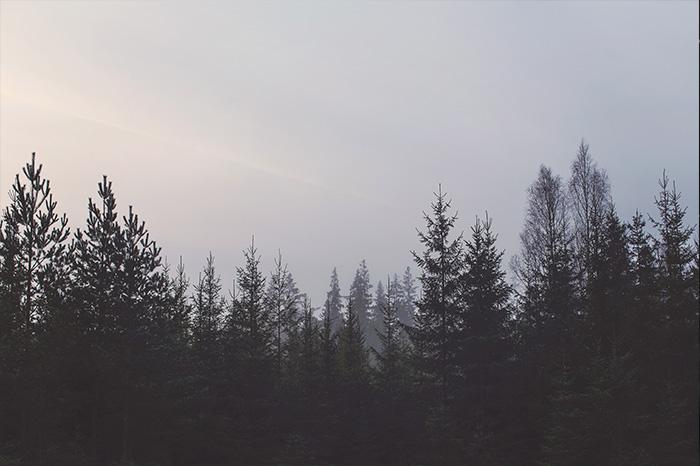 5-magdeleine